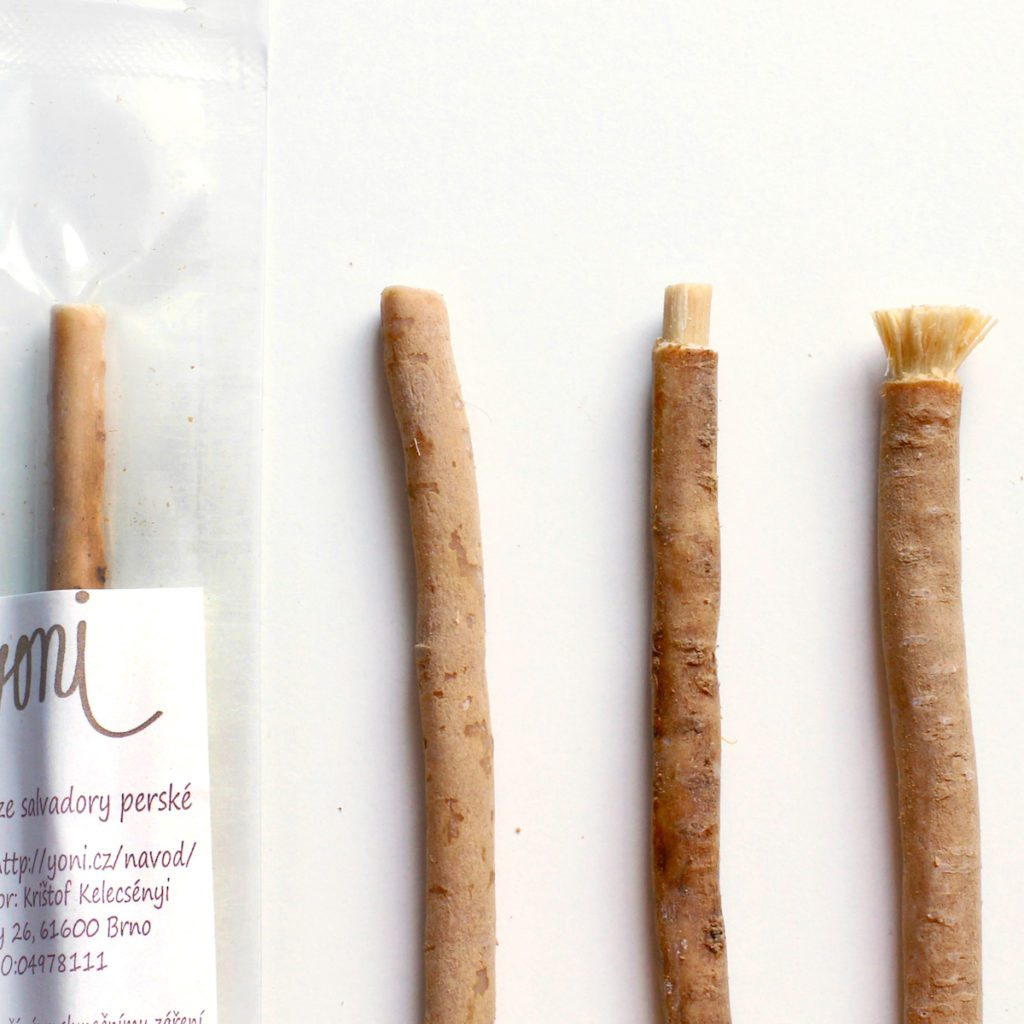 RAWTOOTHBRUSH natural toothbrush and toothpaste