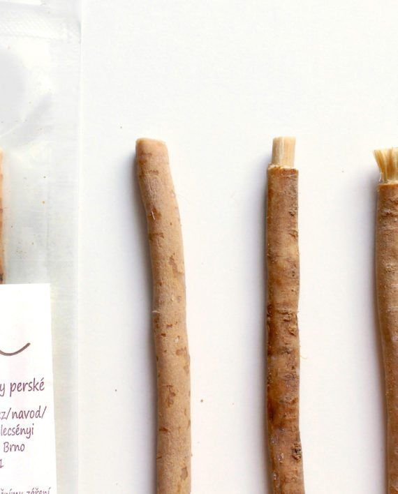 Natural Way To Brush Teeth Without Toothpaste