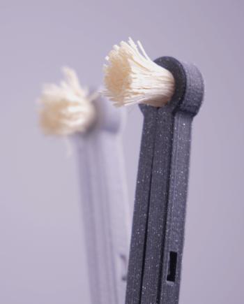 Násada rawtoothbrush se salvadorou perskou