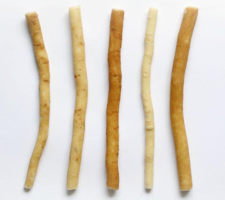 Přírodní kartáček na zuby ze salvadory perské – 10ks